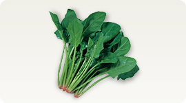 http://www.super-lutein.net/export/sites/superlutein/vi/vn/images/elements/image-03.jpg