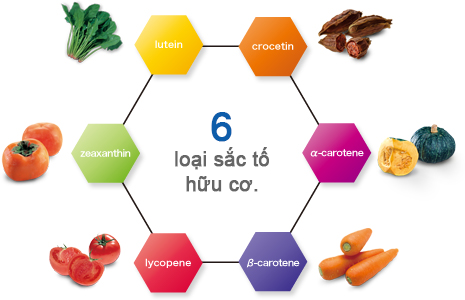 http://www.super-lutein.net/export/sites/superlutein/vi/vn/images/faq/image-01.jpg